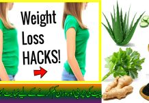 2 Home Remedies to Get Rid of Belly Fat and Weight Loss